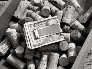 The Rambler Elite Stainless Money Clip - XOIR