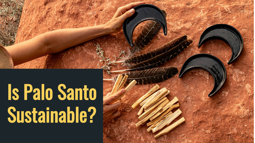 Is Palo Santo Sustainable?