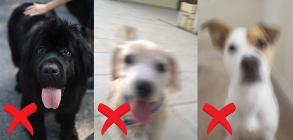 Avoid blurred images