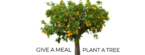 IHP Refinery Social Responsibility Give A Meal Plant A Tree