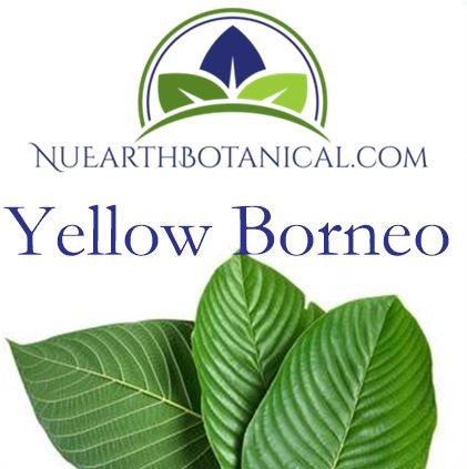 Yellow Borneo