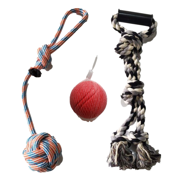 Assorted Dog Fetch and Tug Toys - 3 Pack