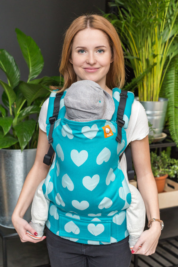 Full Standard Wrap Conversion Carrier - Love Sprinkle - Baby Tula