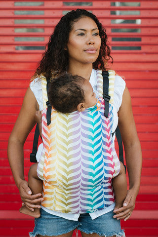 Full Toddler Wrap Conversion Carrier - Tula Migaloo Delight - Baby Tula