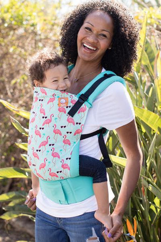 Sanibel - Tula Baby Carrier - Baby Tula
