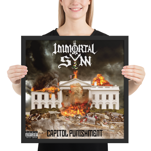 Capitol Punishment framed poster