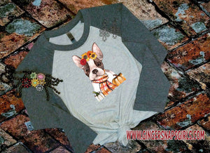 Autumn Frenchie, French Bulldog with Scarf, Sunflowers, and Pumpkins Sublimation Transfers