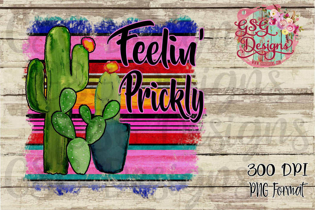 Feeling Prickly Cactus Serape Funny Sublimation Transfers