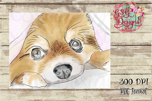 Pomeranian Watercolor Hand Painted Exclusive GSG Sublimation Transfers
