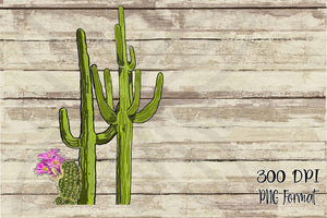Three Hand Drawn Cacti, Doodle Cactus PNG, Instant Download, Digital Design Element PNG