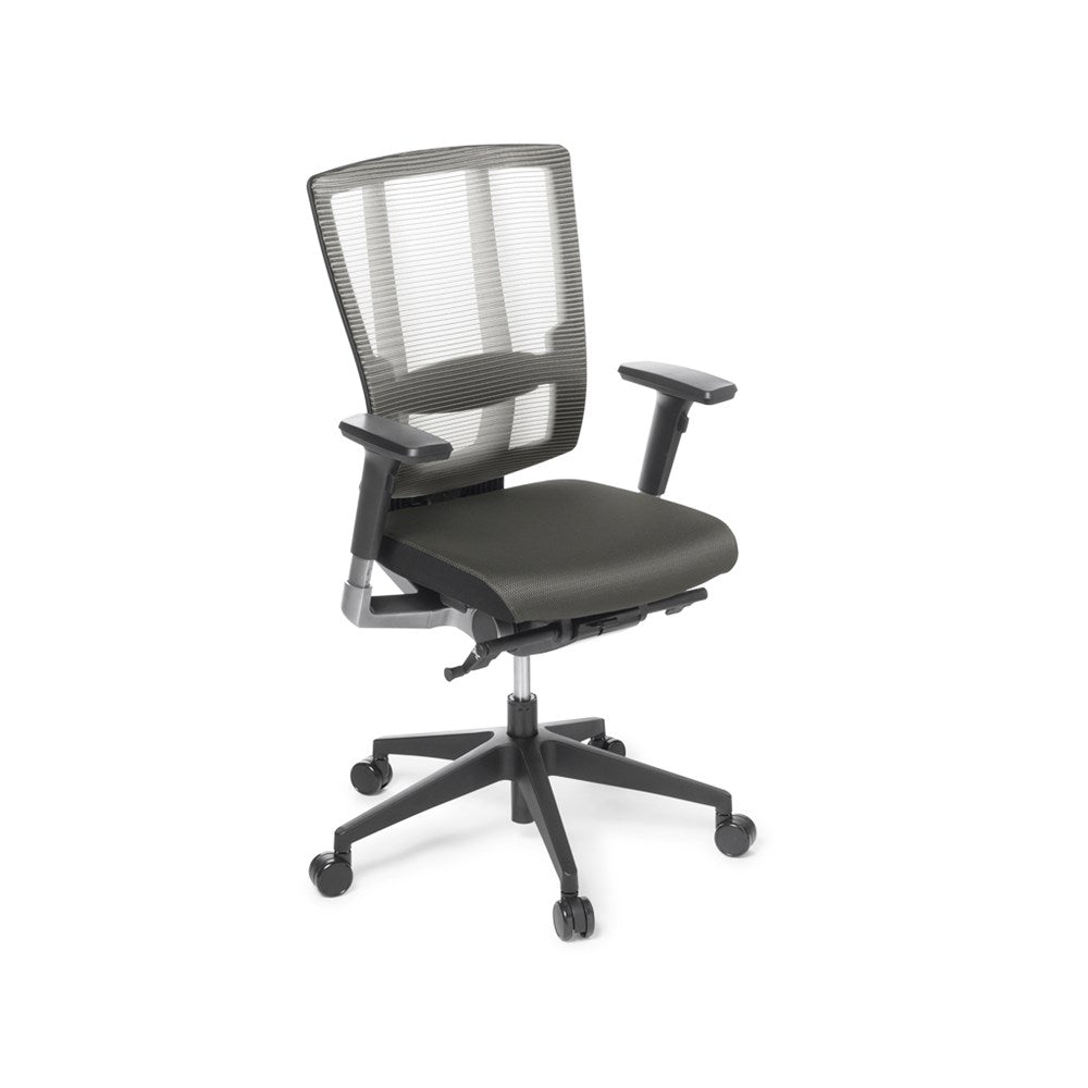 Cloud Ergo Mesh Task Chair with Armrests