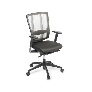 Cloud Ergo Mesh-Back Task Chair with Armrests