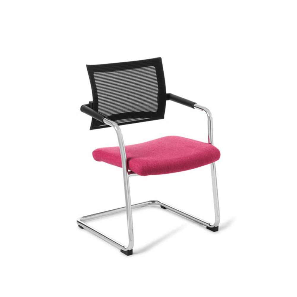 Program Meeting Chair