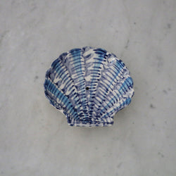 Ceramic Soap Dish (#3)
