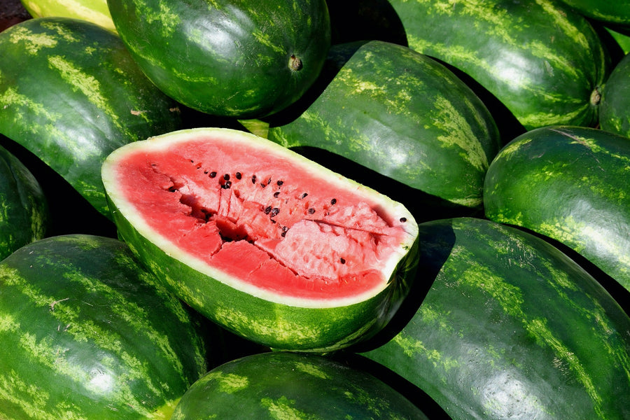 Watermelon as a food and as Medicine