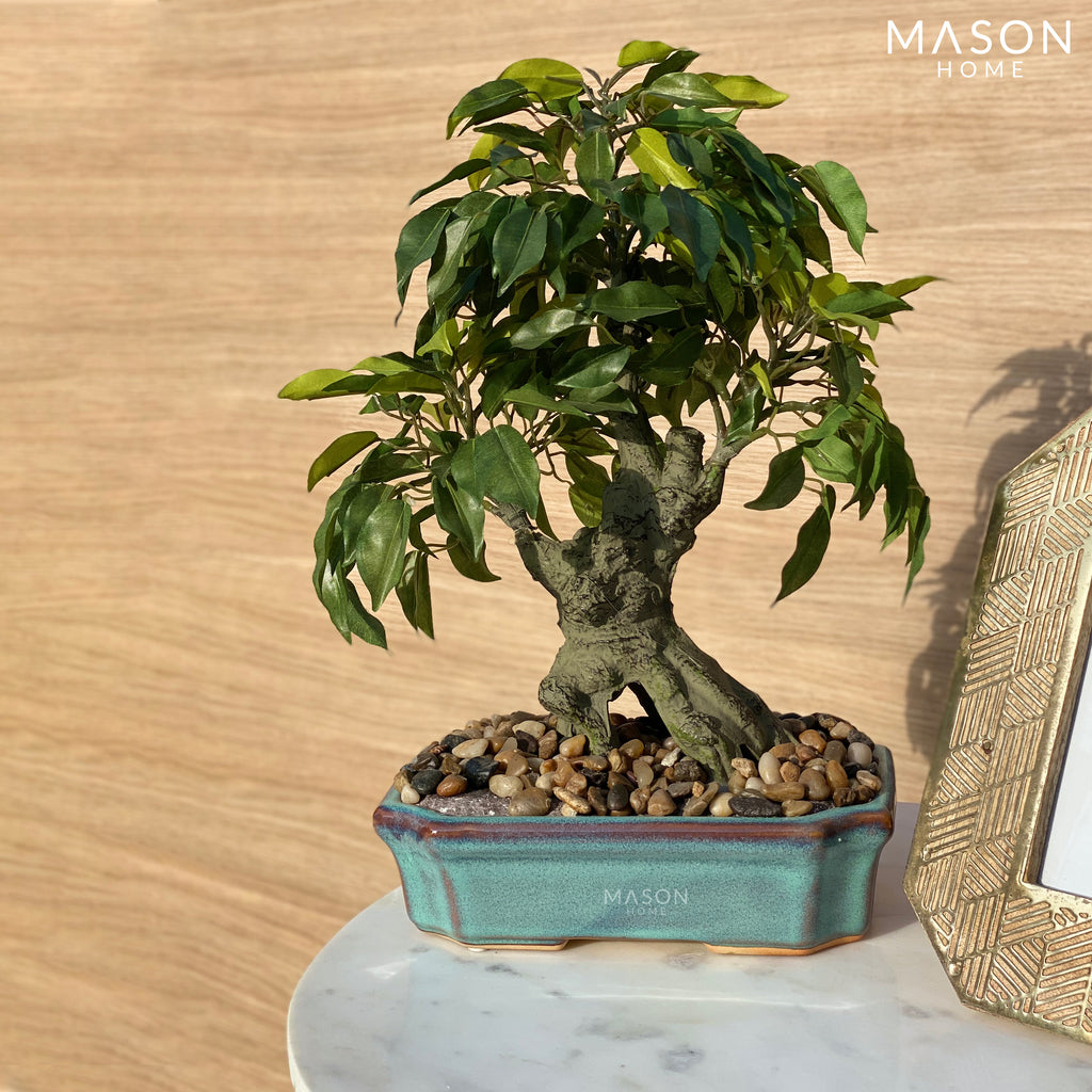 JAPANESE FAUX BONSAI - Mason Home by Amarsons - Lifestyle & Decor