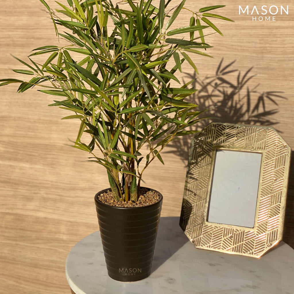 POTTED BAMBOO TALL - Mason Home by Amarsons - Lifestyle & Decor