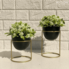 OLVERA ARTIFICIAL PLANTS (SET OF 2) - WHITE