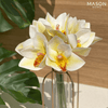 ORCHIDS BUNCH - WHITE