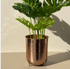 SAFI PLANTER ROSE GOLD - Mason Home by Amarsons - Lifestyle & Decor