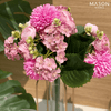 MIXED BUNCH - BLOSSOM PINK