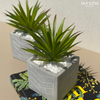 NOVA CONCRETE POT - GREEN