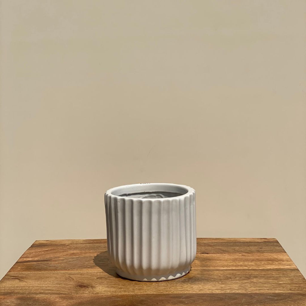 RIBBED CERAMIC POT PLANTER - SMALL - Mason Home by Amarsons - Lifestyle & Decor
