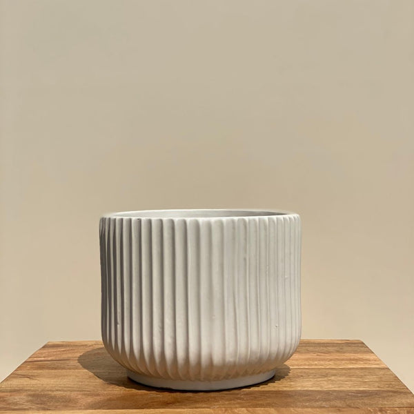 RIBBED CERAMIC POT PLANTER - LARGE - Mason Home by Amarsons - Lifestyle & Decor