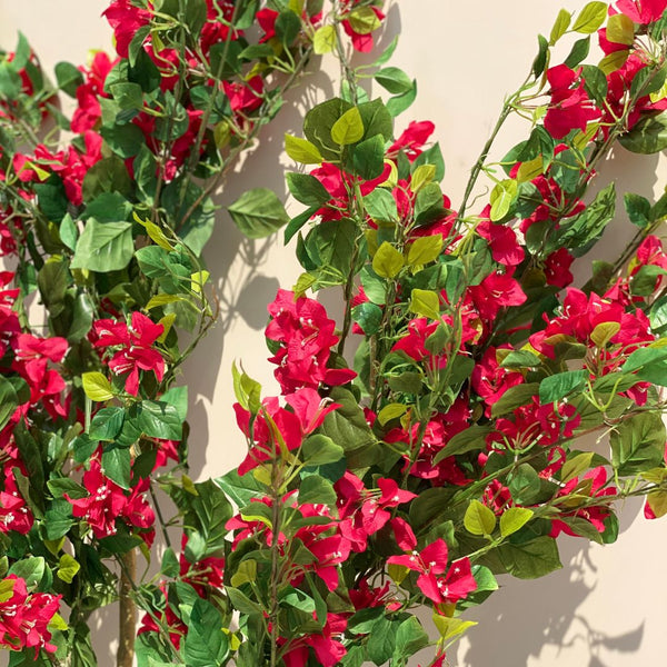 BOUGAINVILLEA TALL PLANT - Mason Home by Amarsons - Lifestyle & Decor