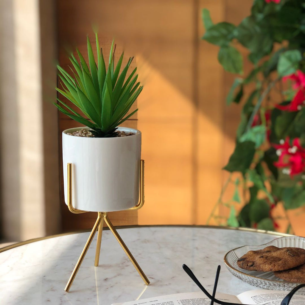 SIERRA PLANTER - Mason Home by Amarsons - Lifestyle & Decor