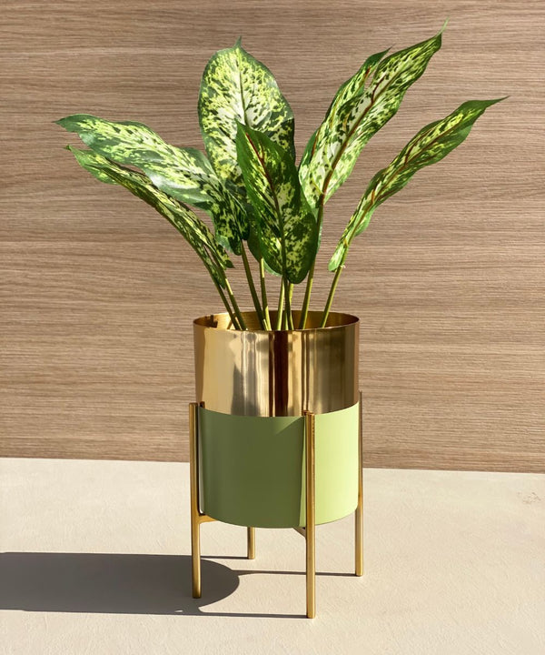 TAMPA MINT - GOLD PLANTER - Mason Home by Amarsons - Lifestyle & Decor