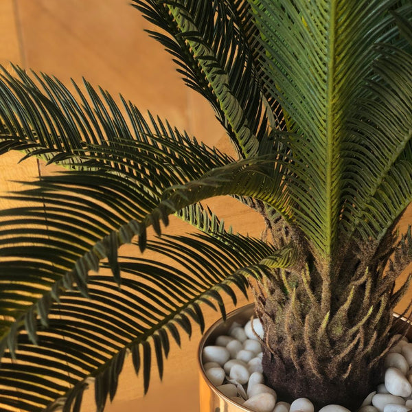 CYCAS FAUX TREE