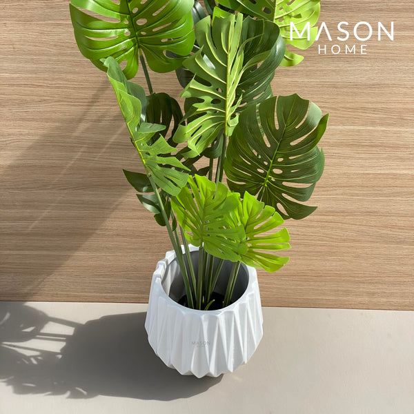 MONSTERA PLANT - 4 FEET - Mason Home by Amarsons - Lifestyle & Decor