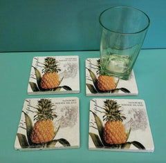 Coaster Set, Newport, Pineapple