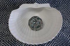 Cockle Shell Bowl