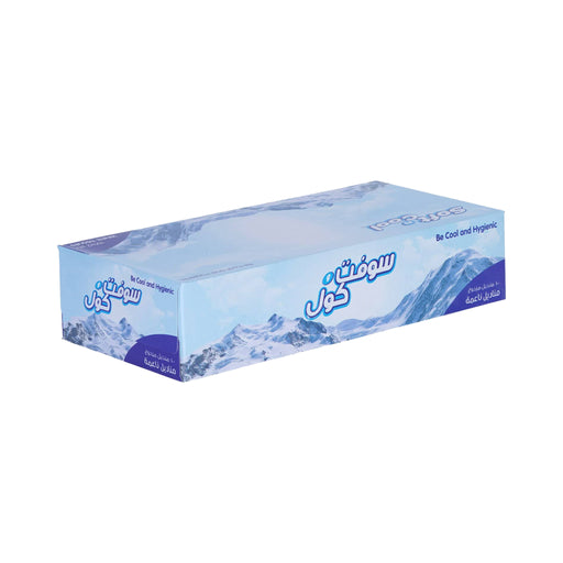 Hotpack | SOFT N COOL FACIAL TISSUES 100 x 2 PLY SILVER PACK| 30 Pieces