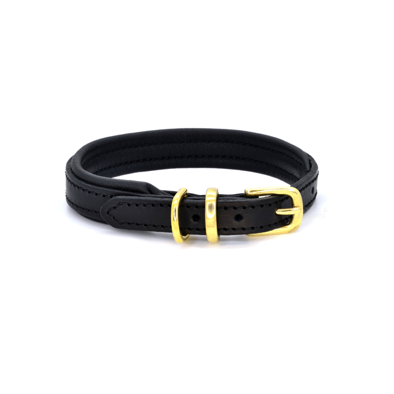 Luxury Black with Brass Padded Leather Dog Collar by Dogs & Horses