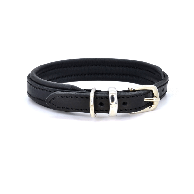 Luxury Black Padded Leather Dog Collar by Dogs & Horses