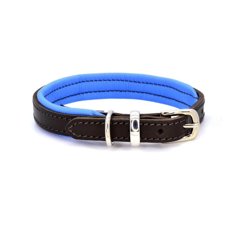 Luxury Blue Padded Leather Dog Collar by Dogs & Horses