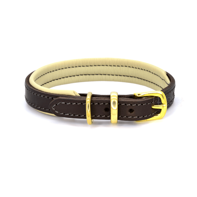 Luxury Brown and Cream Padded Leather Dog Collar by Dogs & Horses