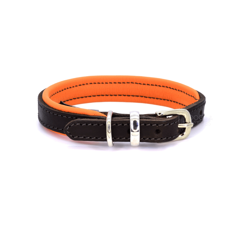 Luxury Orange Padded Leather Dog Collar by Dogs & Horses