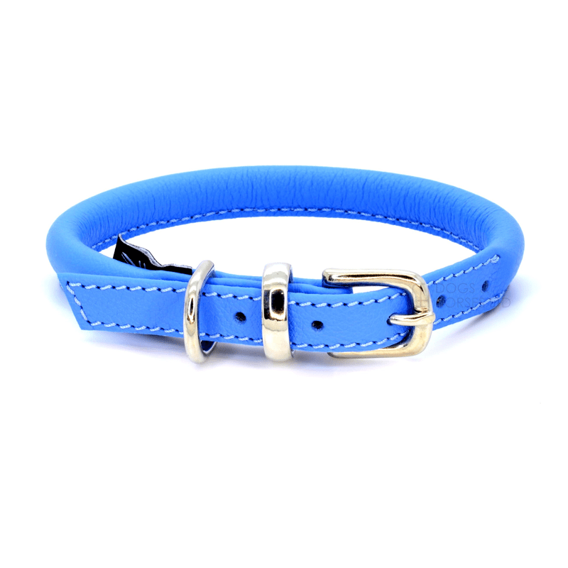 Blue Rolled Leather Dog Collar by Dogs & Horses
