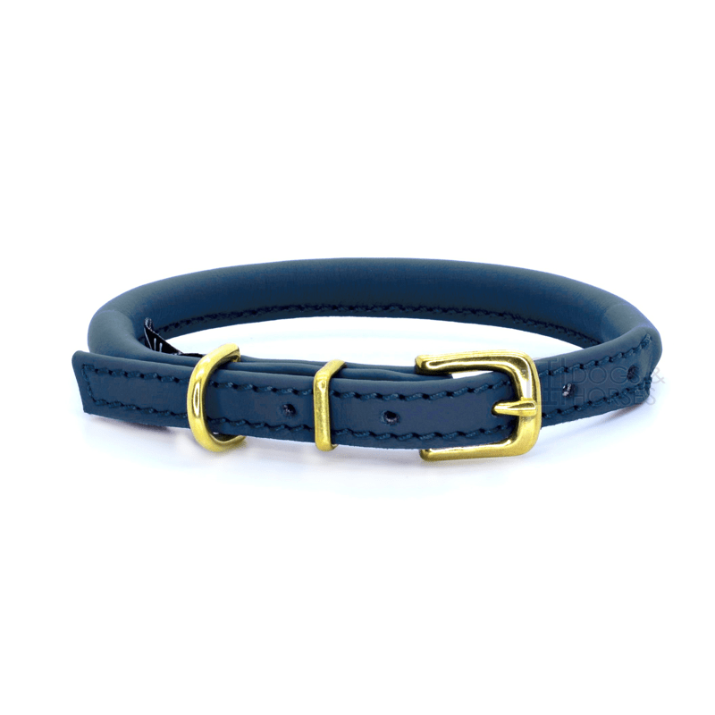 Navy With Brass Rolled Leather Dog Collar by Dogs & Horses