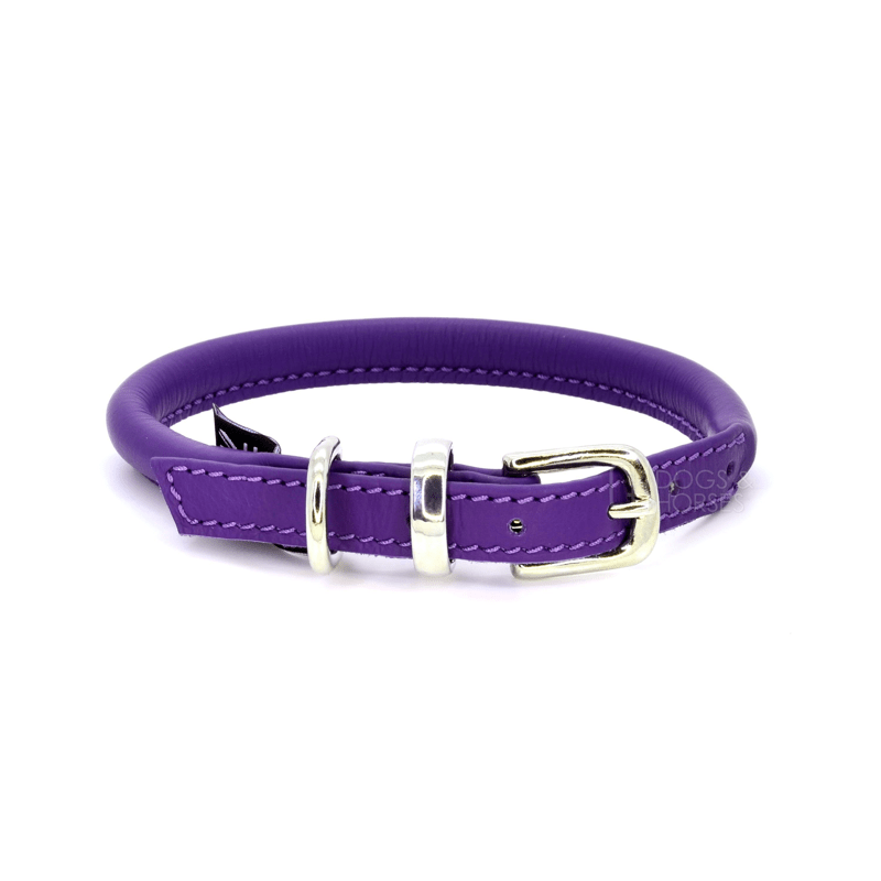 Purple Rolled Leather Dog Collar by Dogs & Horses