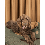 Green Tweed Snuggle Dog Bed by Danish Design