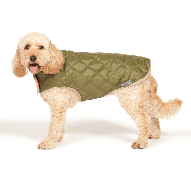 Danish Design Showerproof Quilted Dog Coat in Green