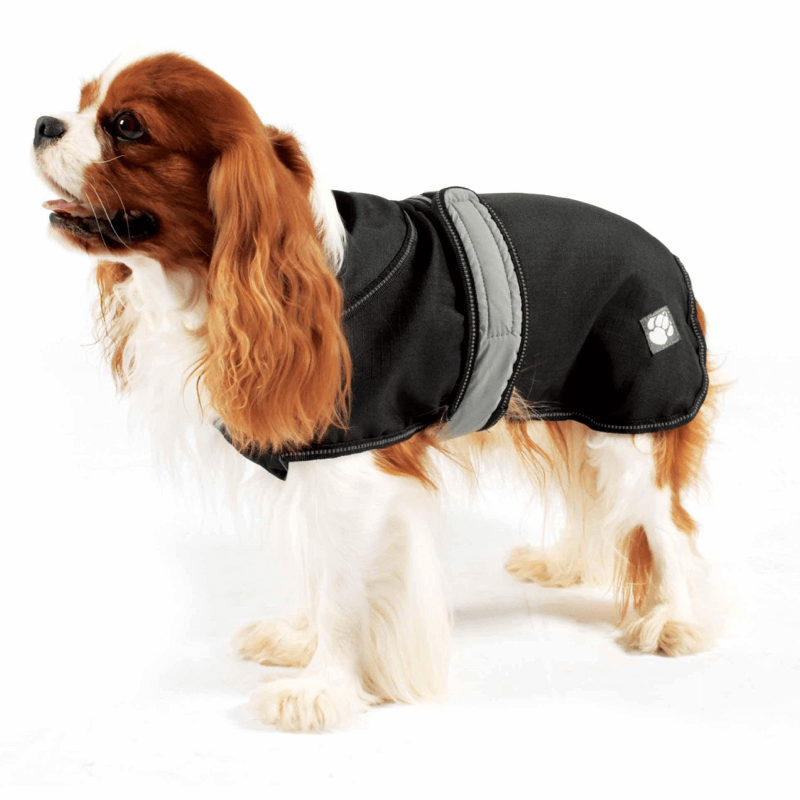 The Ultimate 2 in 1 Waterproof Dog Coat in Black