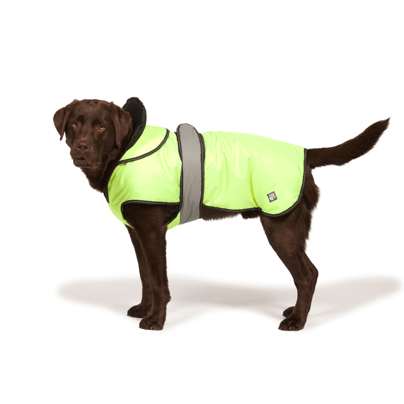 The Ultimate 2 in 1 Waterproof Dog Coat in High Vis Yellow
