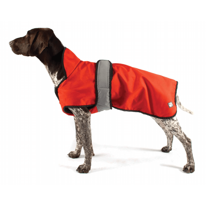The Ultimate 2 in 1 Waterproof Dog Coat in Orange