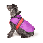 The Ultimate 2 in 1 Waterproof Dog Coat in Purple